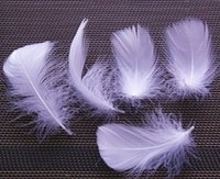 Wholesale Custom Color White Goose Feathers Goose Down For Jewelry Apparel Decor Diy Feather cm
