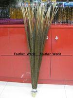Wholesale golden pheasant tail length cm zebra pattern feathers