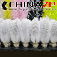 Wholesale CHINAZP Crafts Factory cm inch in Length Selected Prime Quality Bleached White Silver Plumes Feathers