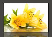 Cheap Beautiful yellow lilies,1 Panel Set HD Canvas Print Painting Artwork,, decorative painting cheap modern canvas art