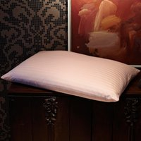 world of products - Shanghai world expo designated suppliers silk township of suzhou city famous br product top grade mulberry silk pillow