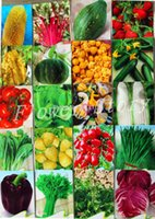 Cheap A total of 1087 seed 20 kinds of vegetables and fruits package sugar beet planting organic vegetable garden strawberry delicious