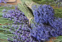 Wholesale Dried lavender flowers Xinjiang production French lavender flower bouquets of first quarter of the new g