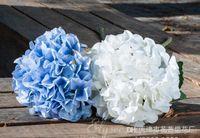 Wholesale 500pcs free Artificial Hydrangea Flower Dia cm Length cm quot Silk Flowers Single Hydrangeas for Wedding Arrangement Party Y287