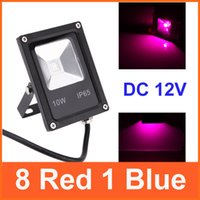 Wholesale Ultra thin DC V W LED Flood Light Plant Grow Light Waterproof Lamp Red Blue for Greenhouse Plant Veg Grow Bloom order lt no tra