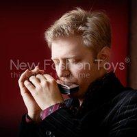 Acheter Harmonica diatonique c cygne-Gros-10 trous diatonique Harmonica Blues Harp clés du port C Silver Swan orgue à bouche gratuit