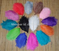 Wholesale lot15 cm inch length all sorts of color ostrich feathers for wedding decor