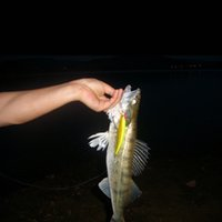 big departments - road sub fishing bait Lure hard bait bionic bait life like swimbait jigs fish Shallow Water Department big Minnow g g