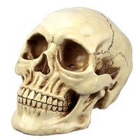 Wholesale Tabletop House Decor Realistic Human Skull Statue Polyresin Bonelike