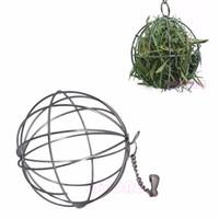 Wholesale Pop Sphere Treat Ball Guinea Pig Hamster Rat Rabbit Feed Dispenser Ball Toy New