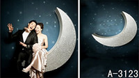 Wholesale 6 Ft Ft New Arrival Night Moon Wedding Backgrounds Photo Studio Backdrops A