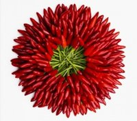 Wholesale 30 seeds bag Giant Red pepper Hot Spices Spicy Chili Pepper Seeds Plants home garden plants