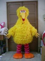 big bird feathers - sesame street EVA head sponge and feather yellow big bird mascot costumes custom made