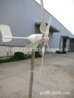 Wholesale 1000w five leaves home wind turbine electricity power supply wild marine foot