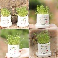 Wholesale DIY Lucky Angel Planting Desktop Potting Bonsai Home Decor Furnishing Flowering Plant Birthday Gifts