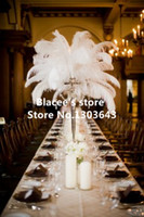 Wholesale prices pure white ostrich feather for wedding decor or table decor