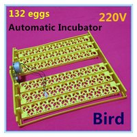 Wholesale 132 automatic egg incubator Bird Quail Parrot Pigeon Incubator Automatically turn the egg tray Bird equipment