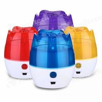 Wholesale Mini Rose USB Humidifier Home Room Office Air Purifier Freshener Humidifier Mist Diffuser Portable Nebulizer Free DHL Factory Direct