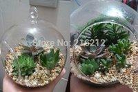 Wholesale Borosilicate Glass Hanging Vase Tabletop Vase Home Decor Diameter cm Transparent