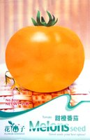 Wholesale seed Orange tomato New Seeds Bag Vegetables Delicious B021 Garden Supplies from China
