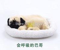pampers - pampered petz pet mate breathing dog Pug Clubcute toy sleeping pet emulational mini lifelike lively visual vivid toy