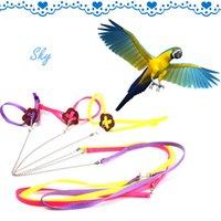 Wholesale New Parrot Bird Harness Leash Adjustable Multicolor Light Soft Fashion