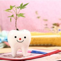 Wholesale 10 set Mini Bonsai with Tooth Shaped Pot Soil and Seeds for Home and Office Table Cute Cartoon Plants KRZ15062