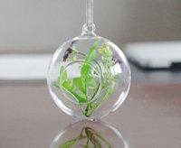 Wholesale 8 Modern Hanging Clear Flat bottomed Crystal Glass Vase Flower Balls Terrarium Decoratives Vases For Wedding Dia cm