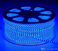 ac controler - 5M W V LED Waterproof LEDs M LED Light strip White Blue Red Yellow Green LED Strips Controler