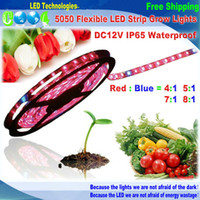 Wholesale DC12V m led grow strip IP65 Waterproof growlight Red Blue for greenhouse Hydroponic plant