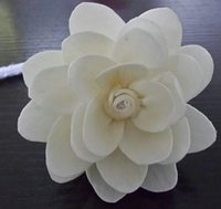 Wholesale New Design and High Quality Sola Flower Essential Oil Diffuser with Diameter cm