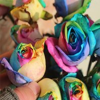 Wholesale Cheap Colourful Rainbow Rose Seeds Purple Red Black White Pink Yellow Green Blue Rose Seeds Plant Garden Beautiful Flower Seeds