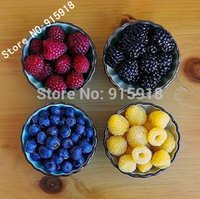 Wholesale Four different varieties of raspberry seeds variety of choice of delicious fruit Edible Easy to grow Home gardening DIY