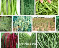 Organic Grain - Promotion Red cowpea seeds long grain cowpea seeds vegetable seeds particles Novel Seed