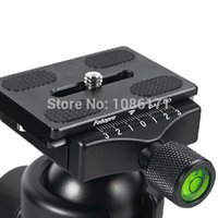 ball bearing bird - FOTOPRO T5S Professional Three Dimensional Ball Head Patent Thin Waist for SLR Camera Bearing kg Specially for Shooting Bird