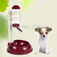 Cheap Wholesale-Small Dog water dispenser Pet Water fountain Puppy cat Drinking water equipment Bowl + kettle Height can adjusted Bowl for dogs