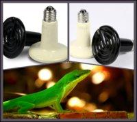 Wholesale 20Pcs W Reptile pet appliances flat type Infrared Ceramic heat lamp v v Reptile pet amphibian poultry P402