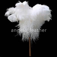 Wholesale inch White Ostrich Feathers for Wedding Decoration Centerpiece