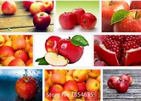apple fruit trees - 20 Mini Apple Fruit Seeds Bonsai Mini Apple seeds Apple Fresh Exotic Tree Seeds Bonsai Seed