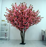 Cheap Bonsai Best sakura seeds