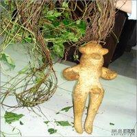 Cheap 2015 Spring Bonsai ginseng Seeds 100pcs 10kinds mix Flower Seeds Novel Blooming Plant for Courtyard Garden Free Shipping