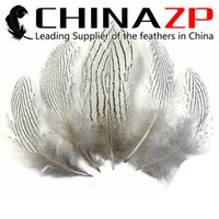 Wholesale CHINAZP Crafts Factory Cheap cm inch in Length Unique Natural Silver Pheasant Plumage Feathers