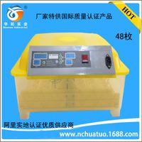 Wholesale egg Incubators Automatic mini incubator small home incubator chickens ducks incubator