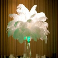 Wholesale Multi color DIY ostrich feathers Wedding Variety of decorative Birthday Christmas Decorations hot selling cm