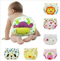 Wholesale Pack nappies inserts TPU waterproof reusable pure cartoon baby cloth diapers baby learning pants