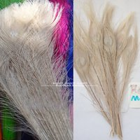 Wholesale White Peacock Tail Eyes Feathers Inches High Quality Peacock Plume DIY Floral Arrangements Decoration
