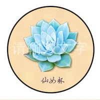 badge marketing - Succulents Time gemstone brooch badge night market stall selling Tourist Taobao gifts