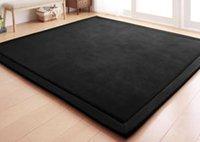 Wholesale cm tapetes de sala carpet Coral Velvet floor shaggy carpet decoration free shiping