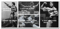 Wholesale ARNOLD SCHWARZENEGGER Bodybuilding Motivational Quotes Silk Poster x36 inches