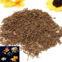 Wholesale Freeze Dried Blood Worm Fresh Tropical Fish Discus Tetra Food Feeding